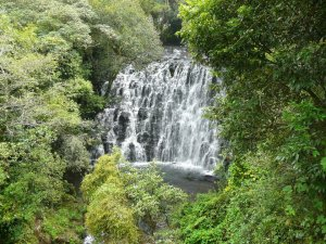 1st_fall_of_the_Elephant_falls,_Shillong